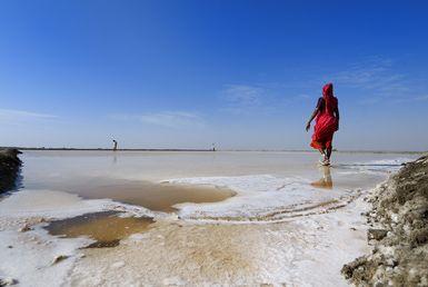 Great Rann of Kutch Salt Desert.