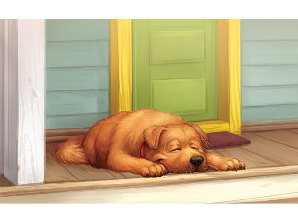 Sleeping Dog Illustration.