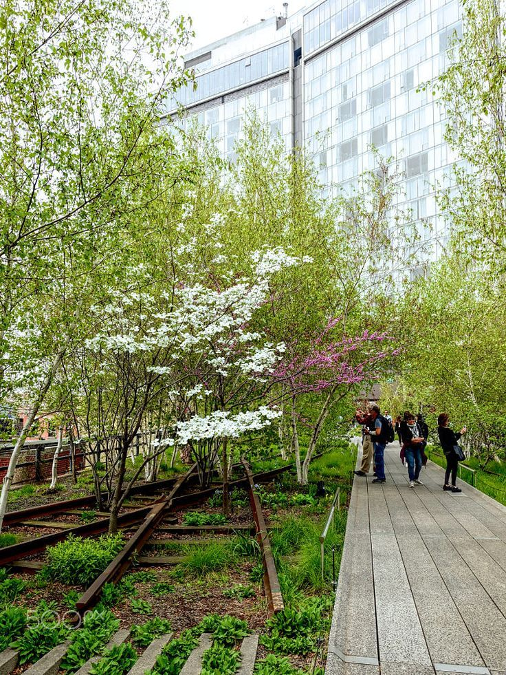 Pin By Full Time Explorer Nepal Tra On New York City In 2020 Urban Garden High Line Linear Park