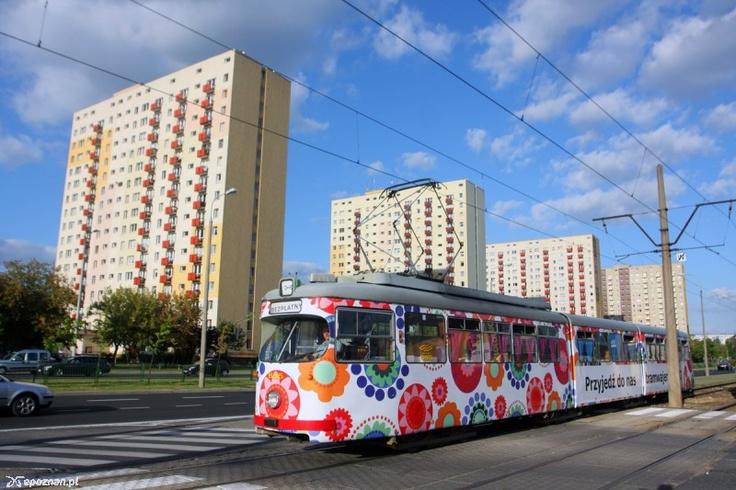 Poznań, specjalny darmowy tramwaj do IKEI na Franowie. (fot. Michał Nadolski) #Poznan, #tramwaj, #tram, #franowo