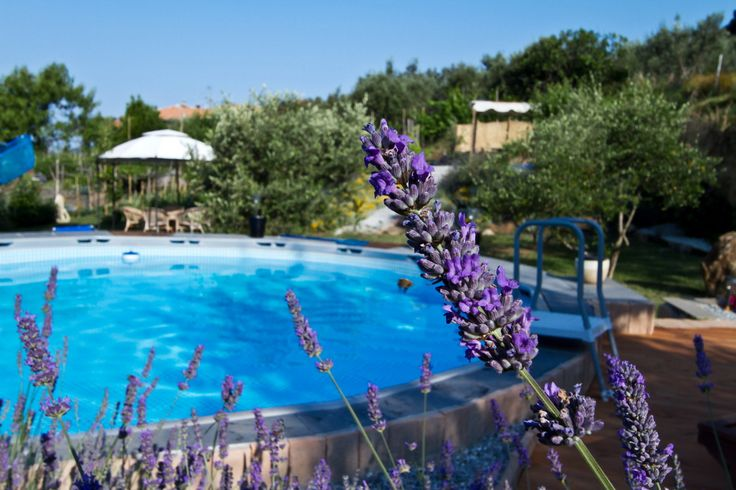 """Visit us in """"Il Giardino degli Angeli"""", biologic B&B in Liguria, Italy. Close to the famous Cinque Terre and La Spezia. You will find a swimming pool, themed rooms (rose, lavanda, bergamot) with essential oils, a biologic fruit garden, a sinergic vegetable garden, aromatherapy massage & yoga."""