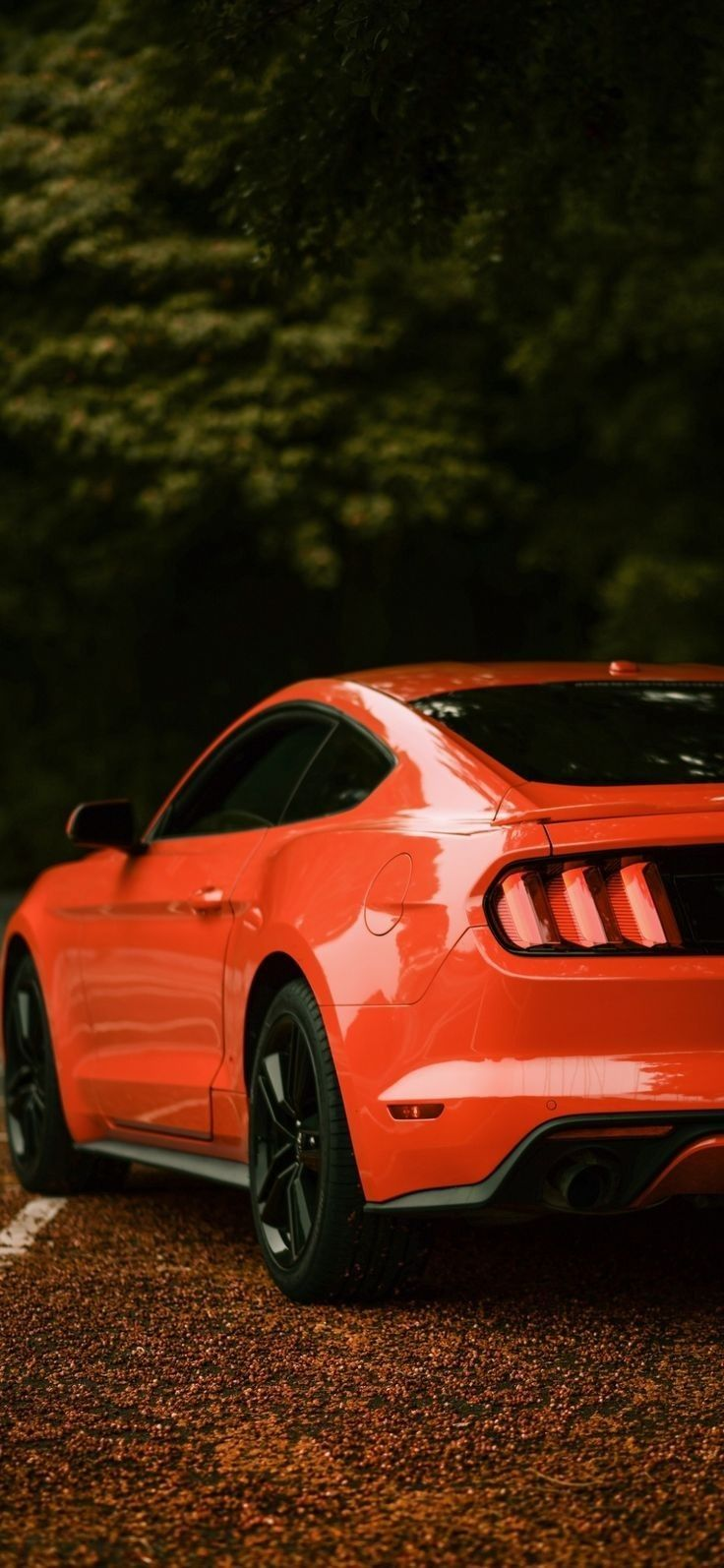 Pin By Mario Gotz On Carros Luxury Car Photos Ford Mustang Ford Mustang Wallpaper