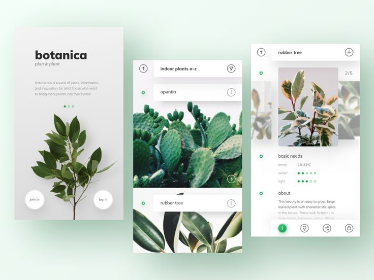 hey, guys! here is botanica – a plant database i've been working on. hope you like it so have a great day, guys! and don't forget to water your plants
