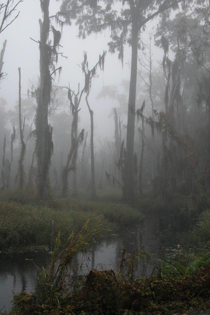 bkmck: fog. ☾ ⁎ ˚ * ☀ The goddess garden ✵ ⁎ *... - Written in the Stars