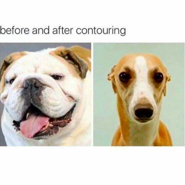 Bilderesultat for contouring before and after humor