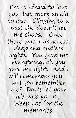 "Sarah McLachlan - ""I Will Remember You"" lyrics. Clinging to a past that doesn't let me choose..."