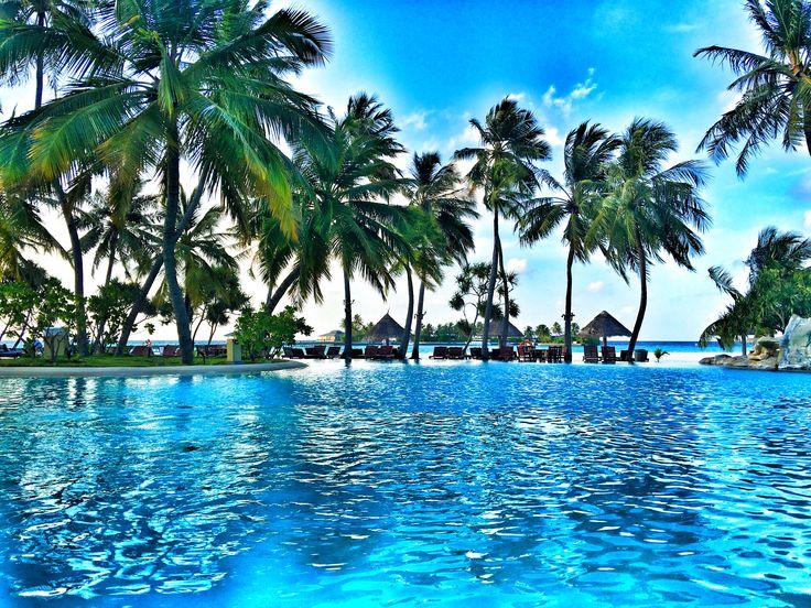 Sun island resort and spa /  Maldives  #travel #holiday #explore #adventure #letsexplore #sea #beach #sun #sunset #sunrise #sunshine #pool #palm #island #swim #maldives #male