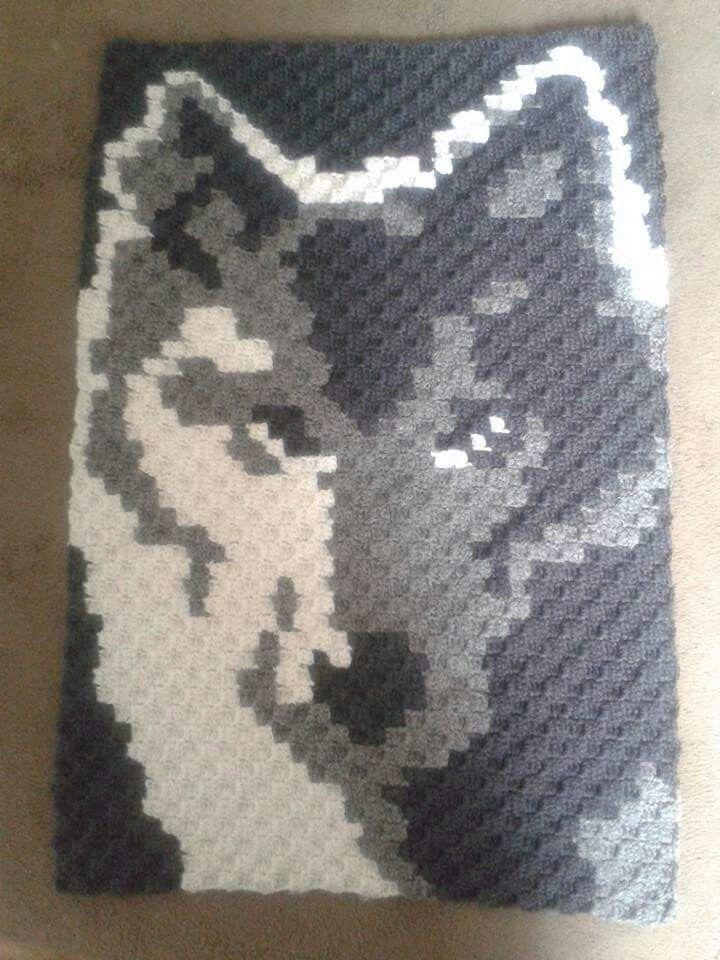17 beste idee?n over Crochet Wolf op Pinterest - Gehaakte dieren, Amigurumi e...