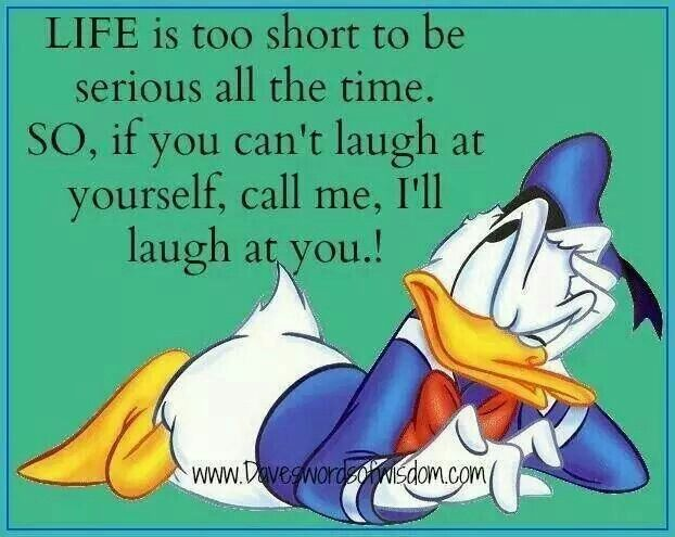 Quotes Laugh At Yourself: 57 Best Donald Duck Images On Pinterest
