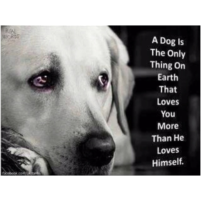 """♥ """"So true!"""" 
