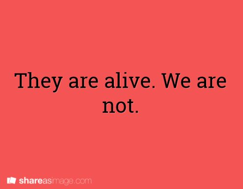 They are alive. We are not (MfaA Writing Prompt #241) shareasimage.com