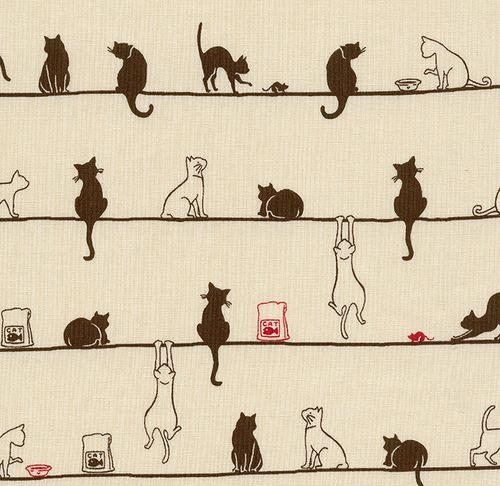 carnetimages-8:    chercat:    violetvoice:    Cats on a Line - Tan (via mwendas)