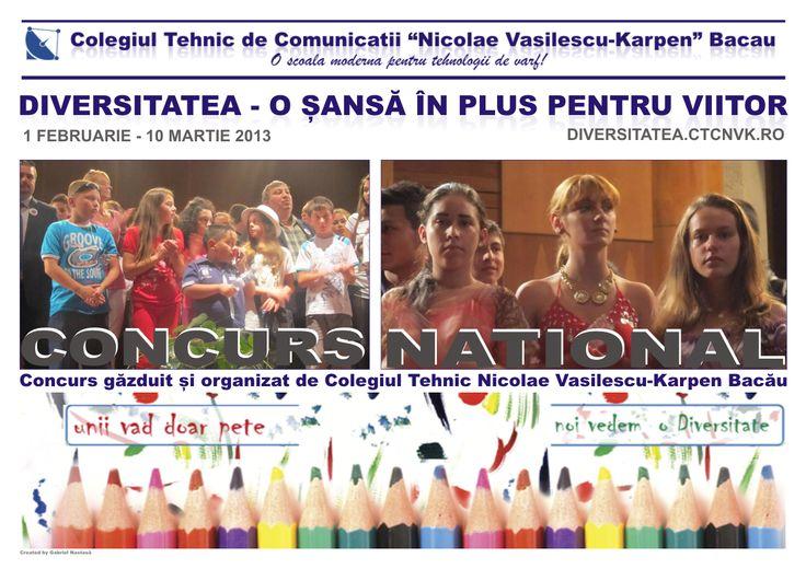 Concurs Diversitatea 2013