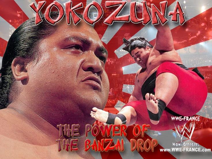 102 Best Yokozuna Images On Pinterest