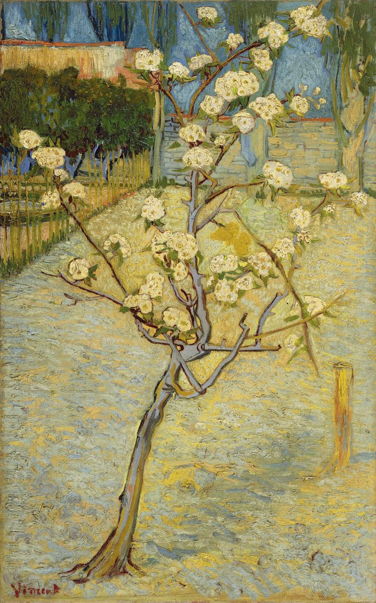 Vincent Van Gogh - Small Pear Tree in Blossom, 1888. Oil on canvas. (Van Gogh Museum, Amsterdam).