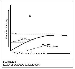 a study of enzymes Sometimes, enzymes like amylase contain a small amount of reducing sugar if this is so, what will you base your conclusions on  differences between tubes 1&3, 2&4.
