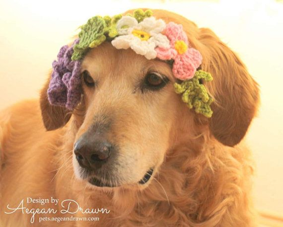 I have seen so many adorable photos of dogs wearing flower wreaths that I wanted to try to come up with my own crochet version. It took me over a https://www.etsy.com/listing/271259202/dog-wreath-flower-wreath-for-dogs-dog