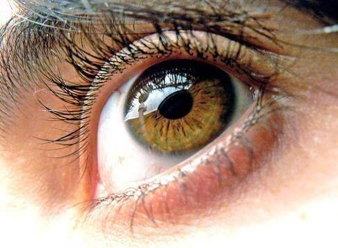El uso frecuente de dispositivos electrónicos está generando un impacto negativo en la salud visual. Hoy te damos 8 consejos para proteger tus ojos.