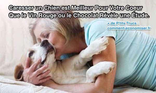 Une étude a montré que caresser votre chien pendant seulement 15 min a les mêmes avantages pour votre santé que boire du vin rouge ou manger du chocolat… Et bien évidemment, sans les effets négatifs du sucre ou de l'alcool ! Découvrez l'astuce ici : http://www.comment-economiser.fr/caresser-chien-meilleur-pour-coeur-que-vin-chocolat.html?utm_content=buffer2f78b&utm_medium=social&utm_source=pinterest.com&utm_campaign=buffer