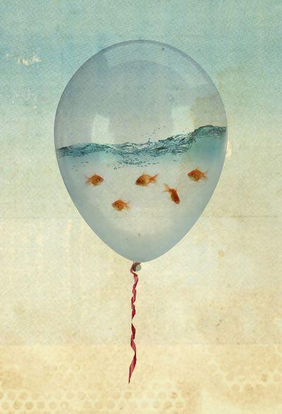 """Reality and Dreams Collide  goldfish inside a balloon   """" Les gens croient poursuivre les étoiles et ils finissent comme des poissons rouges dans un bocal """" Muriel Barbery"""