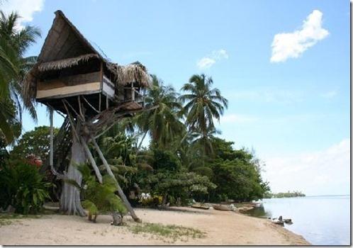 treehouse-on-the-beach