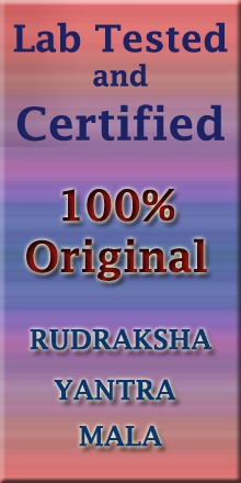 Rudraksha Ratna,Rudraksha Mala, Rudraksha Beads,Rudraksha Benefits,Buy Rudraksha Online
