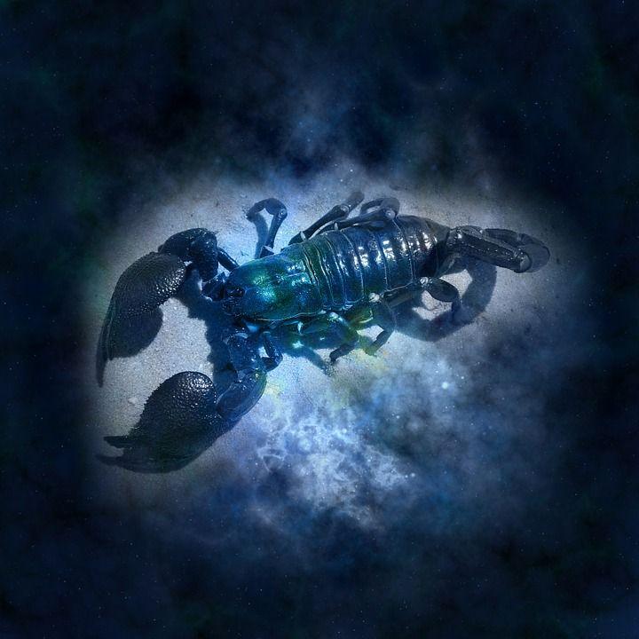 Darmo ilustracja: Horoskop, Astrologia, Zodiak, Rak - Gratis obraz na Pixabay - 644864