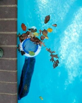 25 best ideas about pool skimmer on pinterest above. Black Bedroom Furniture Sets. Home Design Ideas