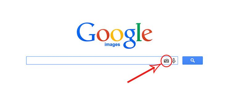 How to Find Websites That Are Using Your Photos