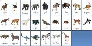 """Alors, après avoir fait les cartes """"familles"""" d'animaux, je viens de terminer d'autres cartes d'animaux. Bien sûr la liste est loin d'être complète et sera complétée par la suite, mais c'est déjà pas mal. Ces cartes là présentent l'animal seul et pas..."""