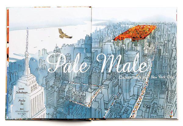 Pale Male  Citizen Hawk of New York City. By Janet Schulman