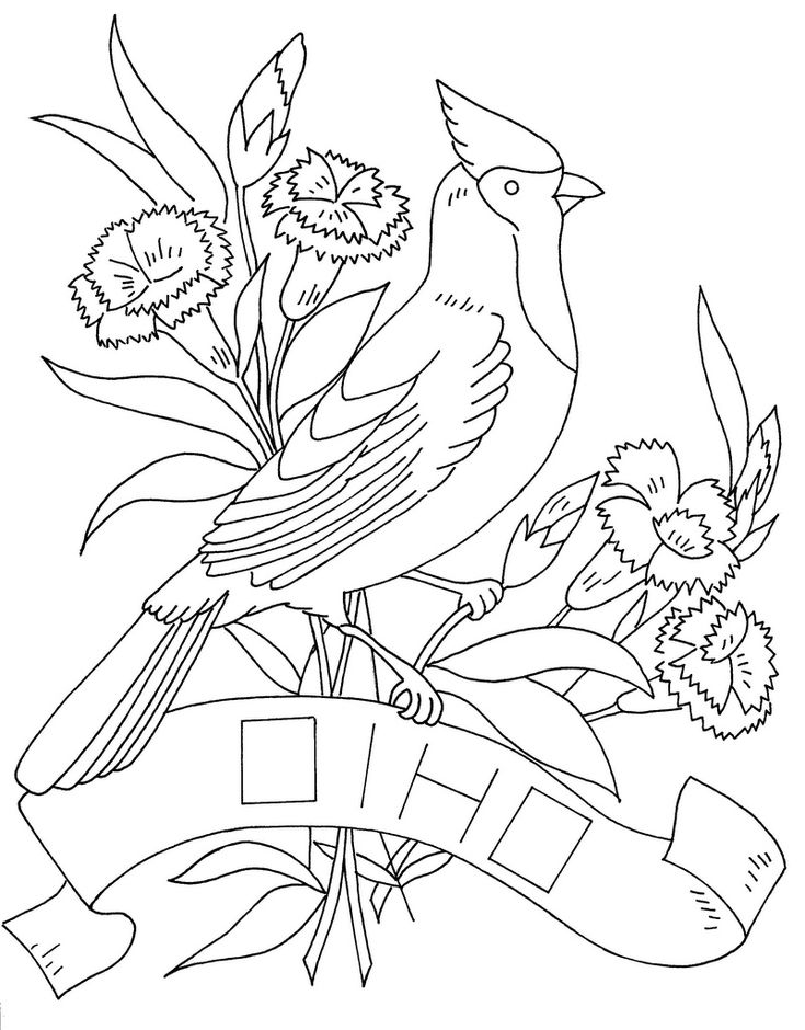 free coloring pages of ohio - photo#13
