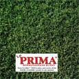 Killing weeds on Bermuda Grass