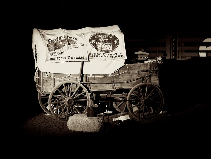 Get my 7 FREE basic photography tips - you NEED to know right here; http://pw5383.wixsite.com/free-photo-tips | Photographer Pernille Westh | Horse Carriage, Wild West Show photographed in Texas