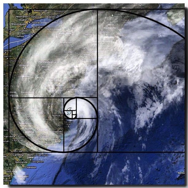 Image result for hurricane golden ratio""