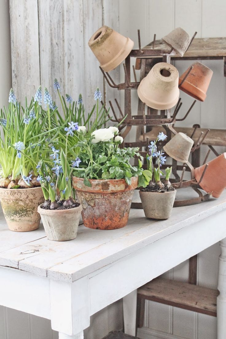 """potting table and old metal bottle rack used as """"pot rack"""""""