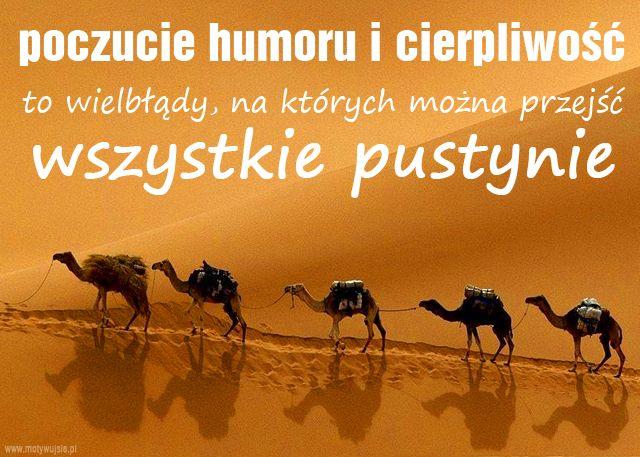 Poczucie humoru i…
