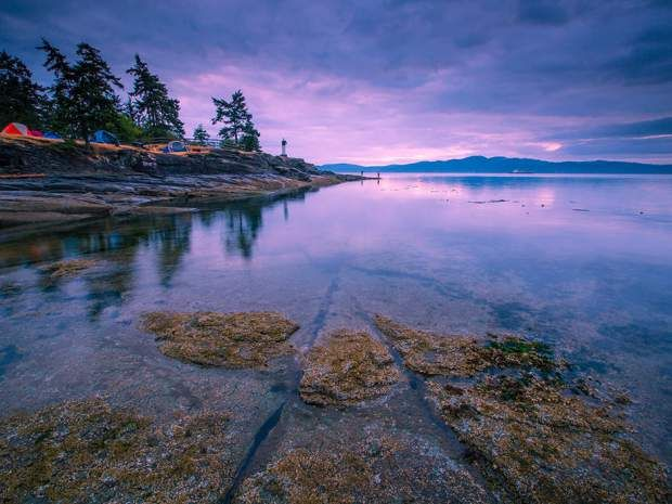 Salt Spring has the largest provincial campground at Ruckle Point, where happy…