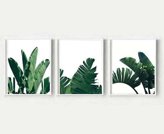 Set Of 3 Prints Banana Leaves Triptych Banana Leaf Print