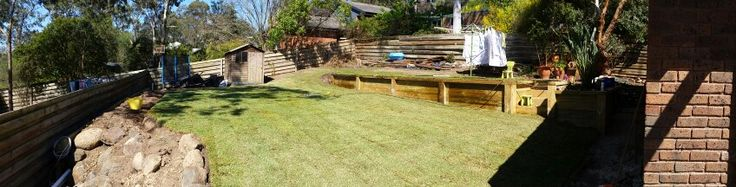 Backyard. Work in progress.  The instant change of turf.