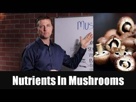 The Top Nutrients in Mushrooms