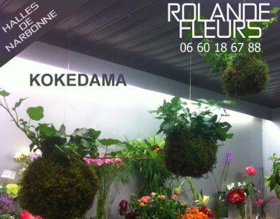 Kokedama 苔玉 réalisés avec amour et passion par Rolande aux halles de Narbonne Languedoc Roussillon / Japanese String Gardens (Kokedama) made with love and passion by Rolande