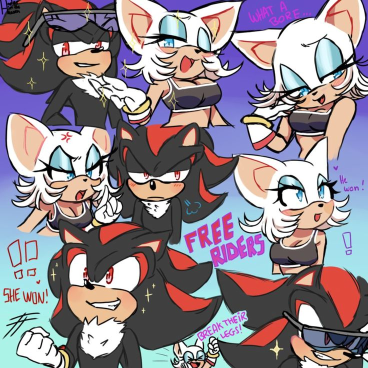*rouge voice* break their fuckin legs do it *shadow voice* hell yeah damn right hell fucking yeah damn fucking right heck yeah They were so mean in Sonic Free Riders lmao i reaaaaally loved them !!...