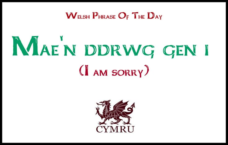 Welsh phrase of the day:  I am sorry
