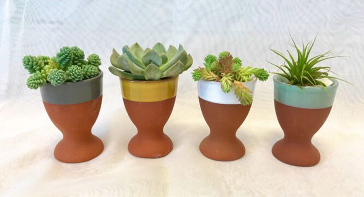 Set of 4 painted egg cup terra cotta planters farmhouse decor/shabby chic/live succulents/planters/pot/garden gifts by PassionforSucculents on Etsy https://www.etsy.com/ca/listing/531297734/set-of-4-painted-egg-cup-terra-cotta