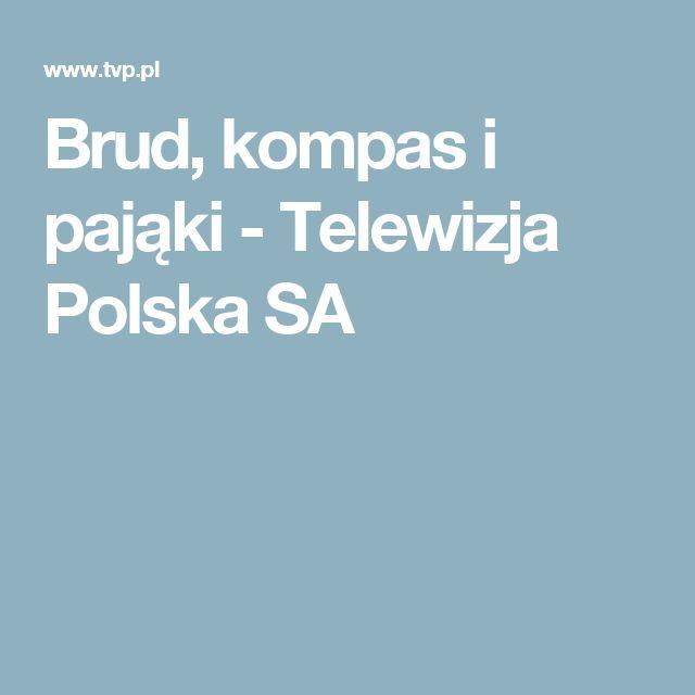 Brud, kompas i pająki - Telewizja Polska SA