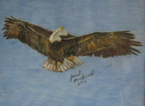 Janet Macdonald's pencil art work - Two Eagles in Flight
