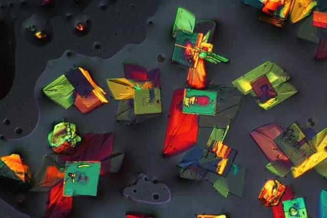 Magnesium chloride and potassium alum mixture   2014 Photomicrography Competition   Nikon's Small World