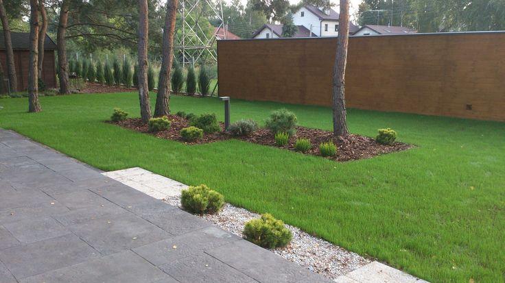 Trawnik oraz rabaty.