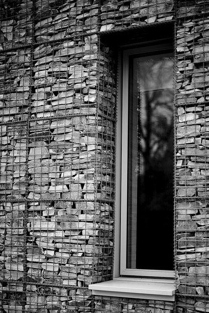 window, stone gabion, gabions, small animal hospital, glasgow university, modern glasgow architecture, award winning design,